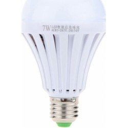 INTELLIGENT EMERGENCY BULB 7W